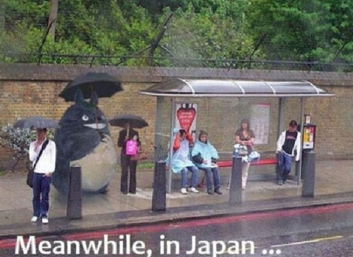 Meanwhile, All Over the World (46 pics)