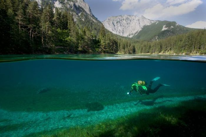 Stunning Photographs Of Life Above And Below Water (50 pics)