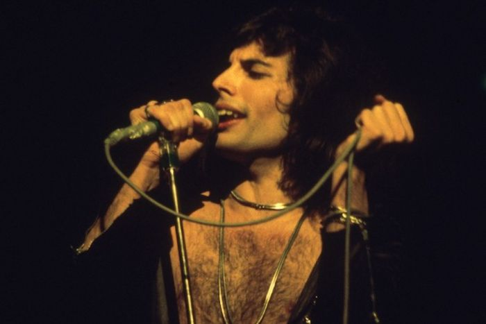 A Tribute To Freddie Mercury (44 pics)
