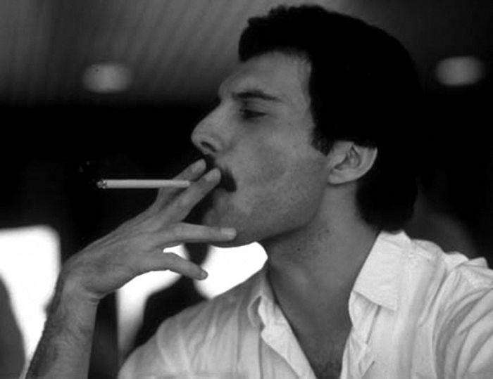 A Tribute To Freddie Mercury (44 pics)