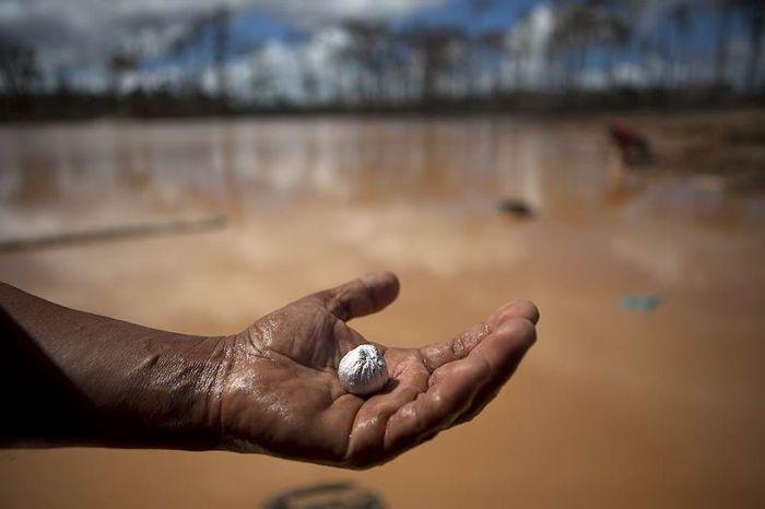 Illegal Gold Mining Is Destroying Peru (26 pics)