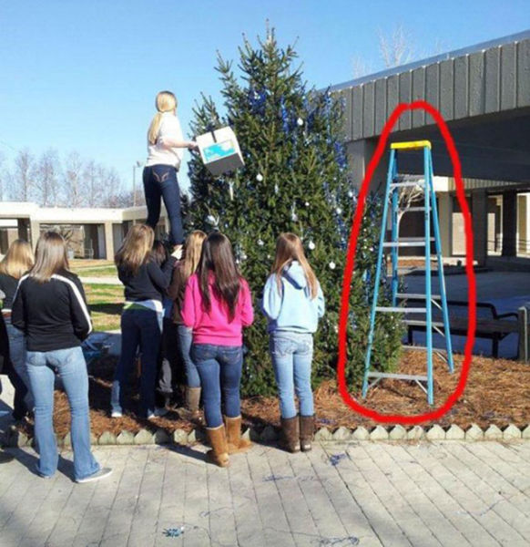 Facepalm Moments. Part 13 (35 pics)