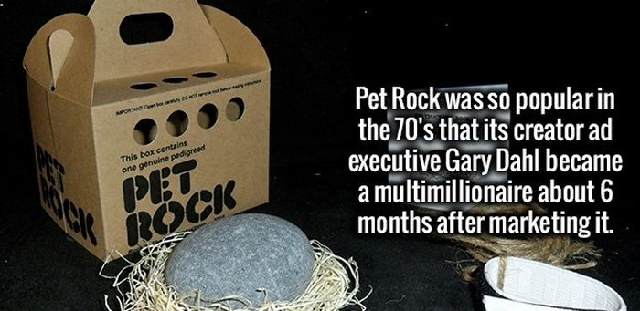 The Most Fun Facts You're Going To Learn Today (35 pics)