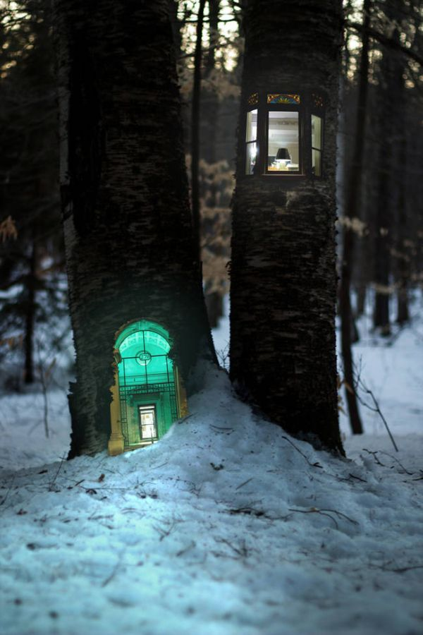 These Magical Forest Photos Make Treehouses Look Way Cooler (7 pics)