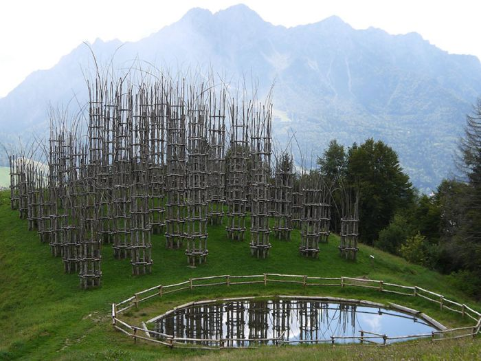 These Living Trees Come Together To Make A Beautiful Cathedral (13 pics)
