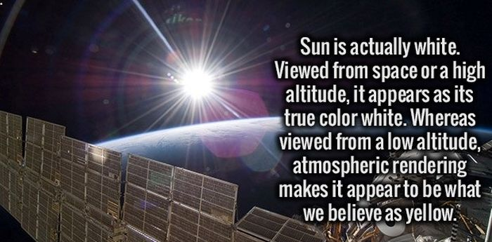 Give Your Brain A Good Workout With These Interesting Facts (34 pics)