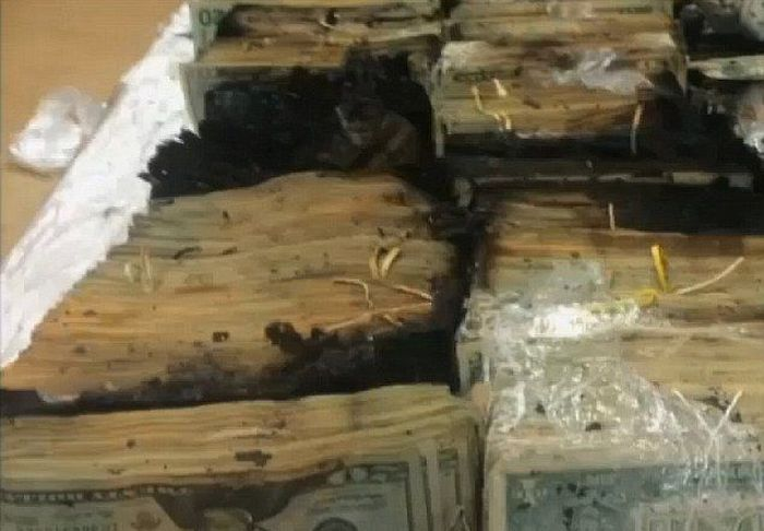 Truck Driver Discovers Massive Amounts Of Money On Fire (6 pics)