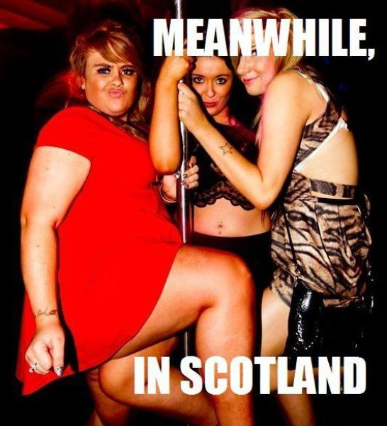 Only In Scotland (44 pics)