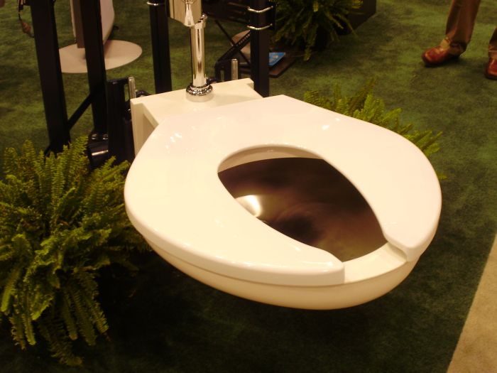 A Toilet Fit For A King (2 pics)