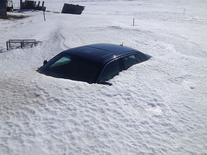 Only in Canada... (43 pics)