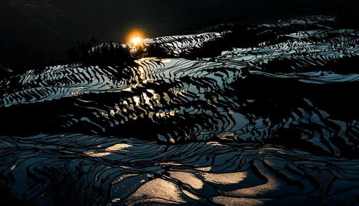 Rice Fields Look Amazing Through A Bird's Eye View (44 pics)