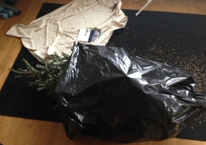 Best Christmas Tree Disposal Prank (3 pics)