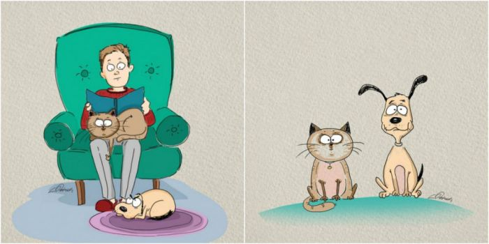 The Differences Between Living With Cats And Dogs (6 pics)