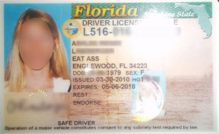 According To Her License This Woman Lives On Eat Ass Street (2 pics)