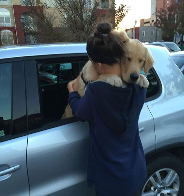 This Is Why Dogs Are Man's Best Friend (22 pics)
