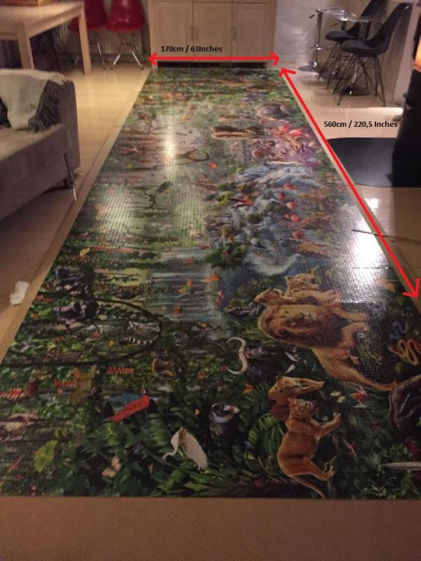 This Is The World's Largest Jigsaw Puzzle (6 pics)