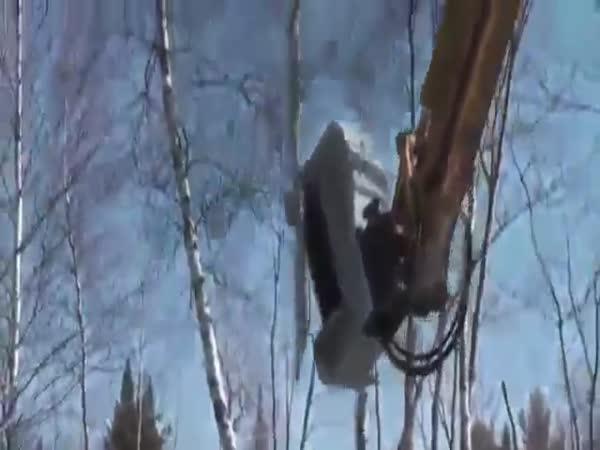 Wood Destroyer