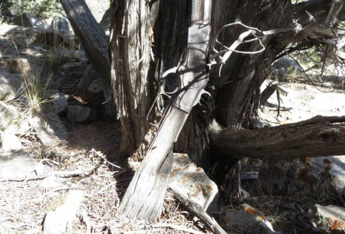 Mysterious Old Winchester Rifle Found In Nevada Park (4 pics)