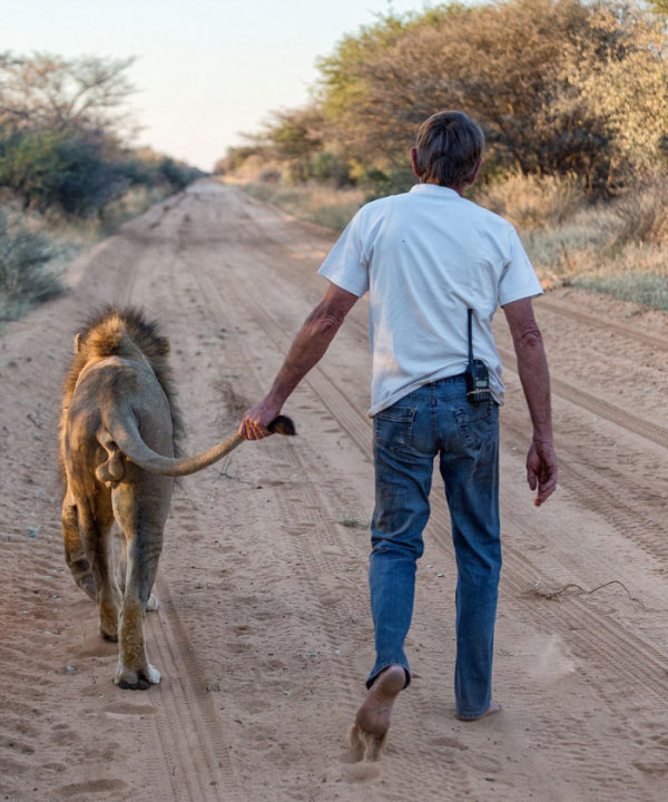 This Man And Lion Have Been Friends For 11 Years (11 pics)