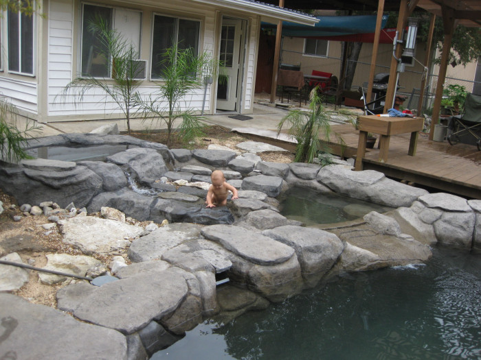 Man Turns Grief Into An Amazing Tropical Pool (30 pics)