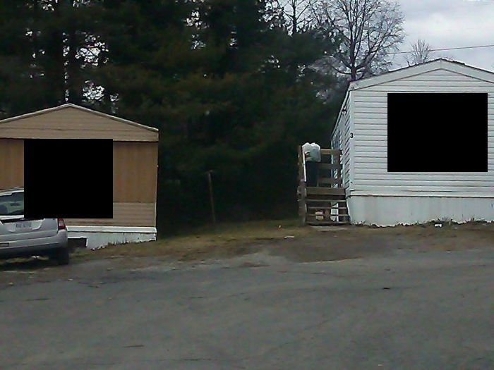 These Two Should Not Be Neighbors (3 pics)