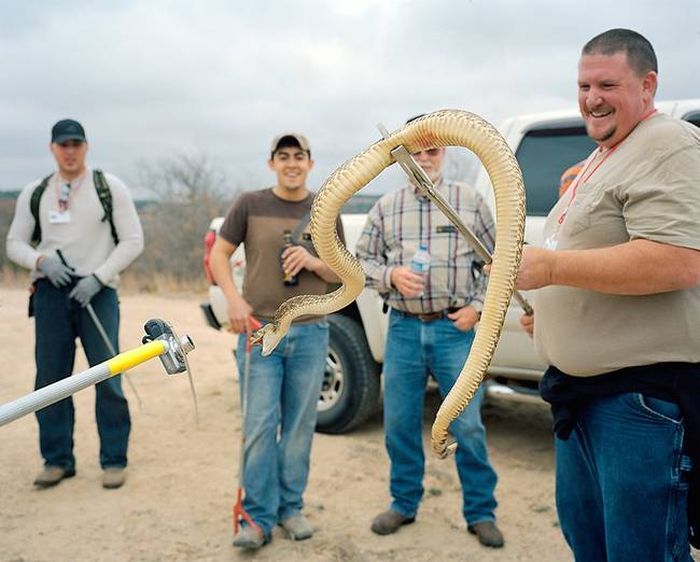 Sweetwater, Texas Loves Rattlesnakes (8 pics)