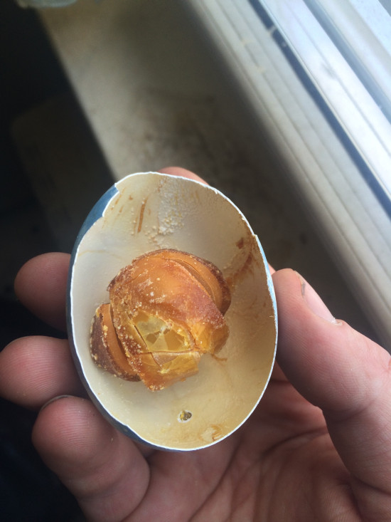 This Is What A 25 Year Old Easter Egg Looks Like (5 pics)