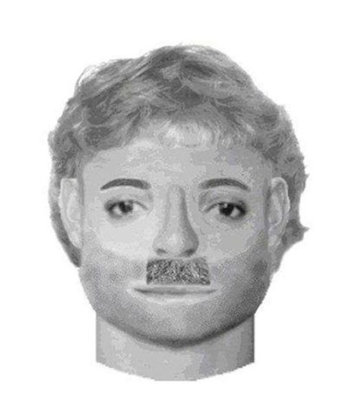 These Police Sketches Are So Bad They're Good (18 pics)