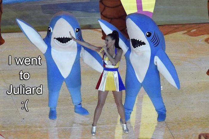 The Best Memes From Super Bowl XLIX (23 pics)