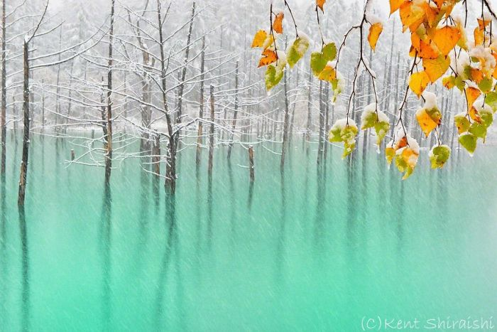 This Pond Changes Colors With The Seasons (14 pics)