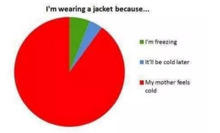 Proof That Pie Charts Can Be Really Funny (33 pics)