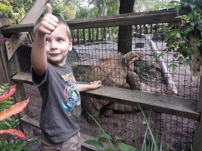 These Kids Got A Sex Ed Lesson From The Zoo Animals (9 pics)