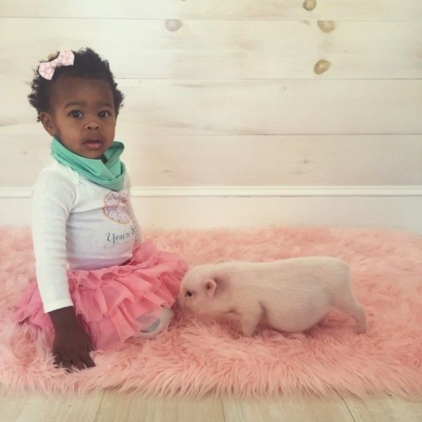 This 2 Year Old Girl Is Best Friends With A Pig (18 pics)