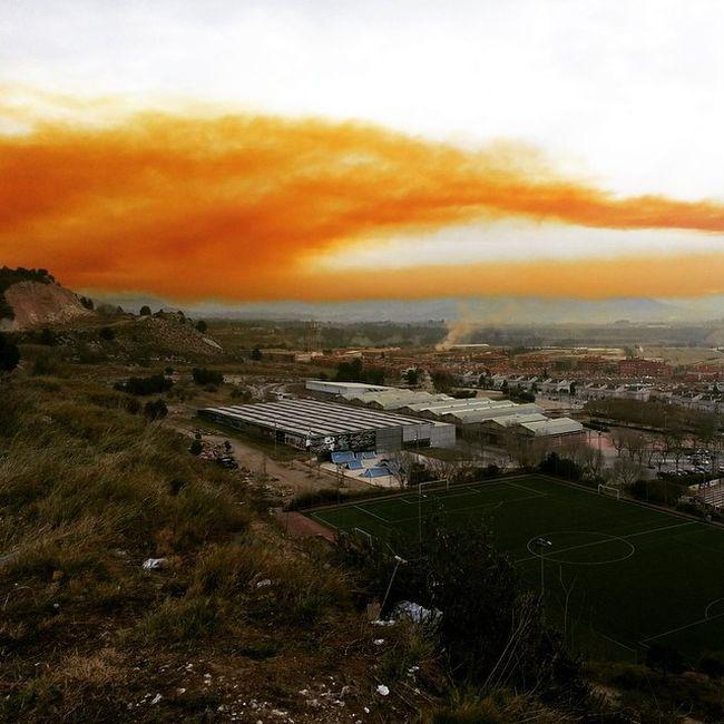 Chemical Plant Explosion Creates Toxic Orange Cloud (22 pics)