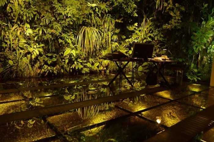 This Jungle Is Not What It Appears To Be (7 pics)