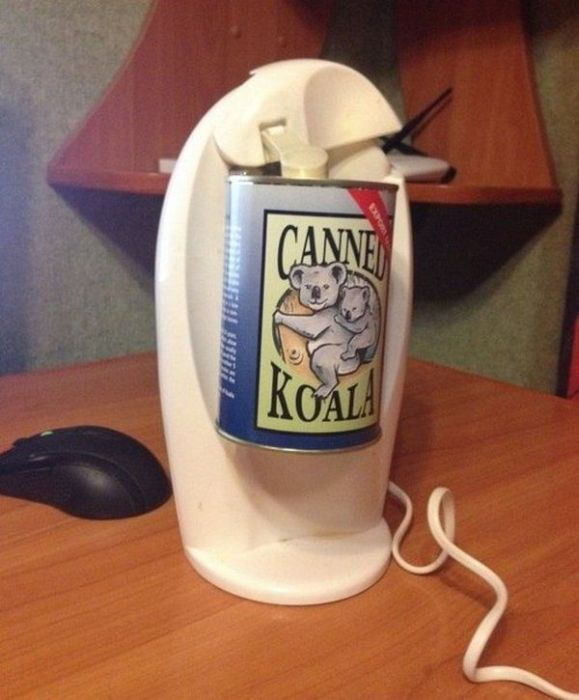 This Is What A Canned Koala Looks Like (5 pics)