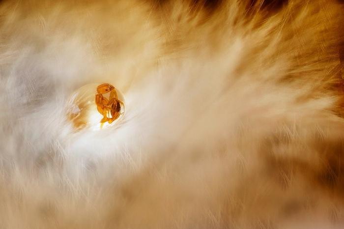 Amazing Photos Of Nature That Aren't Photoshopped (22 pics)