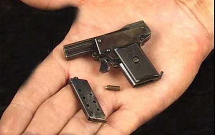 The World's Smallest Semi Automatic Pistol  (7 pics)