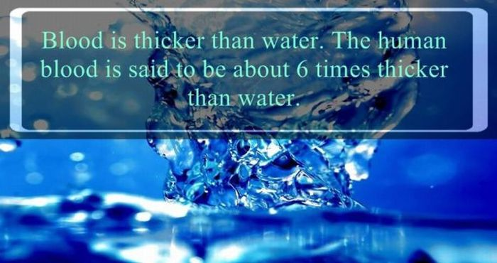 Here Are Some Important Facts About Water That You Need To Know (24 pics)