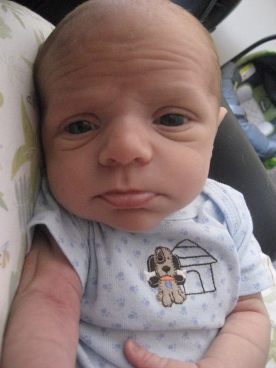 These Babies Just Look Like Really Small Old People (18 pics)