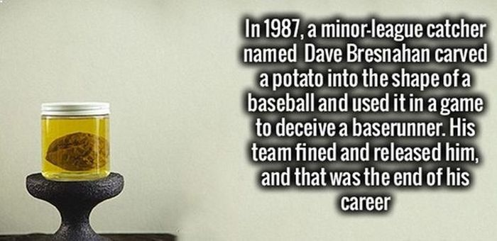 Fun Facts To Feed Your Brain Because It's Thirsty For Knowledge (22 pics)