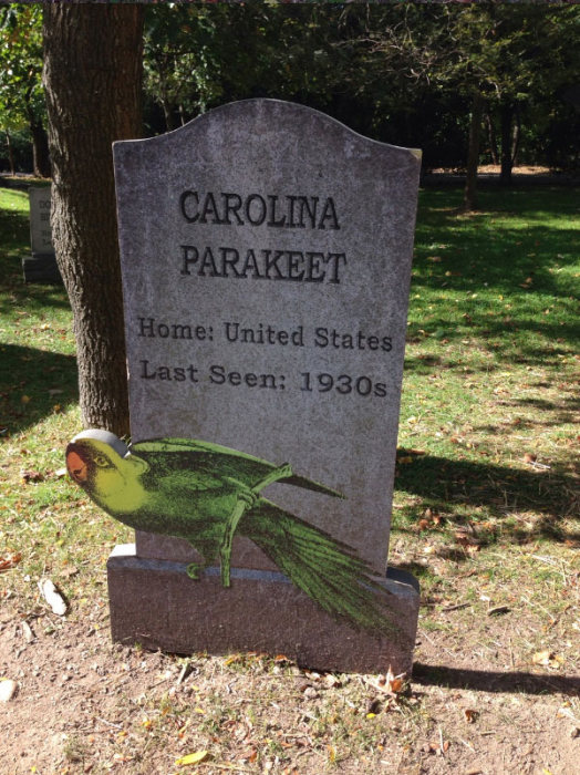 This New York Graveyard Is Dedicated To Extinct Animals (10 pics)
