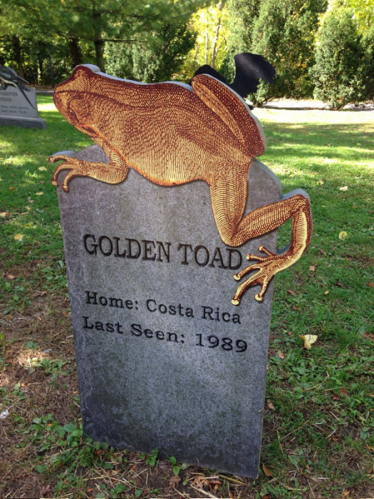 This New York Graveyard Is Dedicated To Extinct Animals (10 pics)