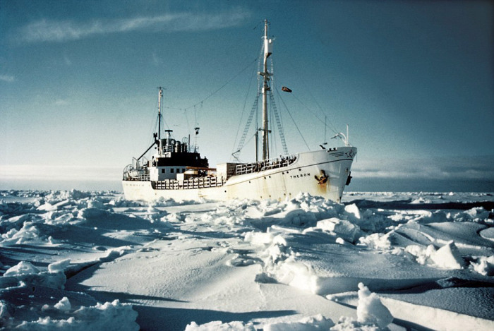 Rare Photos Of The First Successful Antarctic Crossing (14 pics)