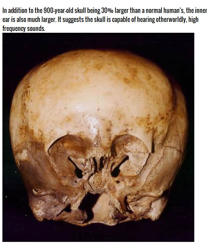 What Is This Mysterious Skull? (4 pics)