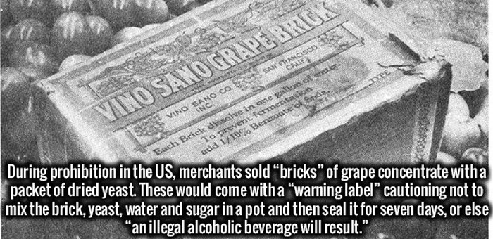 These Facts Will Get Your Brain All Fired Up (34 pics)