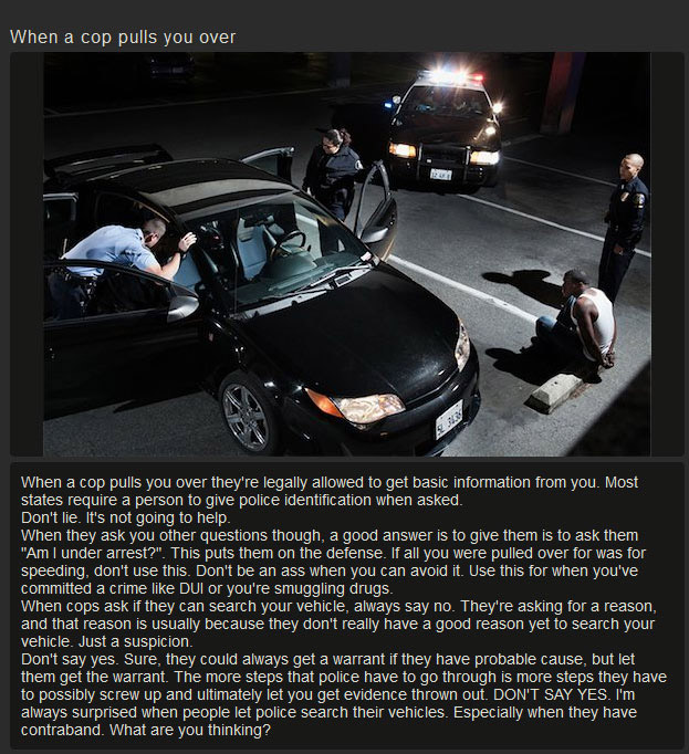 Helpful Tips On How To Deal With The Cops (8 pics)