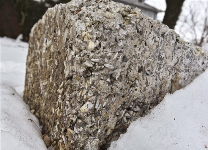 This Concrete Block Is Full Of Teeth, Find Out Why (3 pics)