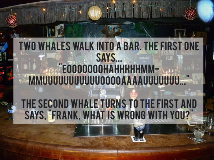 Jokes That Are So Bad They're Good (21 pics)