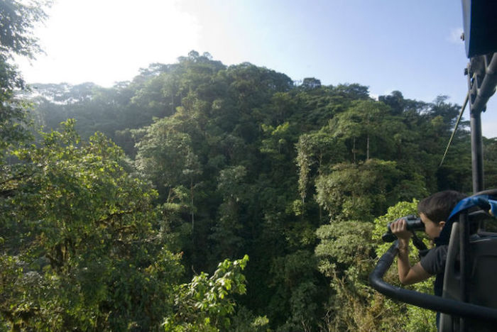 Sky Bike Gives You An Incredible Tour Of The Andean Cloud Forest (6 pics)